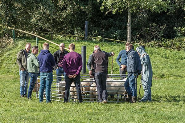 Landgoedboerderij Oosterheerdt - Trainingen